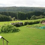 bed and breakfast Ardenne